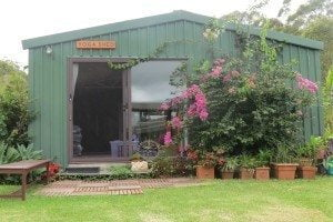 Photo of where yoga classes are held. It's a big green Yoga Shed with flowering bougainvillea at front entrance.