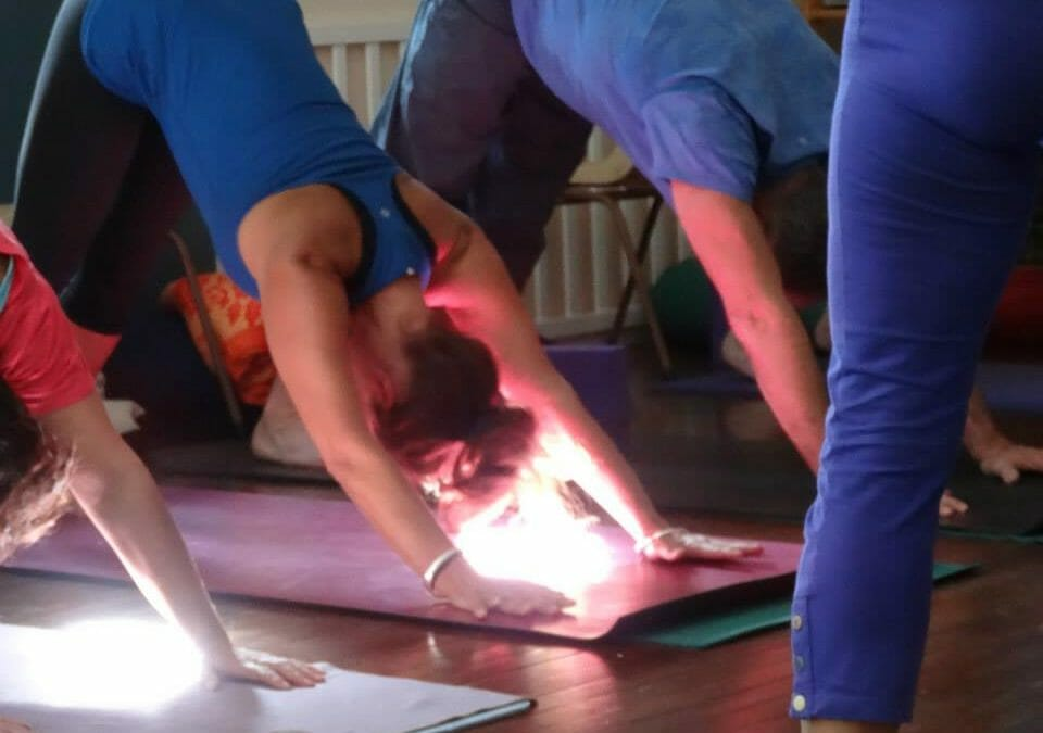 Yogis 'Commun-ifying' in The Bay