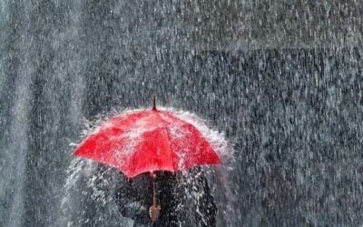 A Hard Rain is Always Lying in Ambush